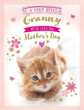 Picture of VERY SPECIAL GRANNY ON MOTHERS DAY CARD